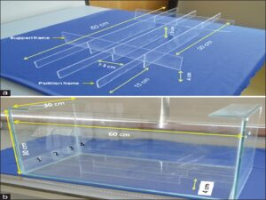 Design of snail attractant tracking device. (a) Design of tracks with partition frames and support frames made from perflex sheets for placement in the aquarium tank and (b) Aquarium tank with tracks for snails' movement for the study of attraction of snails by feed