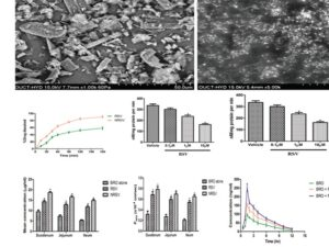 Scanning electron microscope photographs of (a) resveratrol and (b) resveratrol nanoparticles. (c) Dissolution profile of commercial resveratrol and resveratrol nanoparticles. (d) Effect of resveratrol on in vitro CYP3A activity in intestinal microsomes. Data are represented as mean ± standard deviation (n = 6). *Significant difference (P < 0.05) in comparison with the vehicle. Statistical analysis was carried out using one‑way analysis of variance followed by Bonferroni multiple comparisons test. (e) Effect of resveratrol on in vitro CYP3A4 activity in liver microsomes. Data are represented as mean ± standard deviation n = 6). *Significant difference (P < 0.05) in comparison with the vehicle. Statistical analysis was carried out using one‑way analysis of variance followed by Bonferroni multiple comparisons test. (f). Intestinal transport of bromocriptine in duodenum, jejunum, and ileum of Wistar rats. Data are represented as mean ± standard deviation (n = 6). *Significant difference (P < 0.05) in comparison with the bromocriptine alone. Statistical analysis was carried out using two‑way analysis of variance followed by Bonferroni multiple comparisons test. (g) Apparent permeability coefficient (Papp) of bromocriptine in duodenum, jejunum, and ileum of Wistar rats. Data are represented as mean ± standard deviation (n = 6). *Significant difference (P < 0.05) in comparison with the bromocriptine alone. Statistical analysis was carried out using two‑way analysis of variance followed by Bonferroni multiple comparisons test. (h) Plasma drug concentration–time plots of bromocriptine (10 mg/kg) in Wistar rats. Control group administered with bromocriptine alone on 11th day and pretreatment groups administered with resveratrol and NRSV for 10 days and on the 11th day with bromocriptine followed by resveratrol and resveratrol nanoparticles. Data are represented as mean ± standard deviation (n = 6)