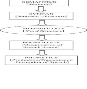 Analytic components of language structure