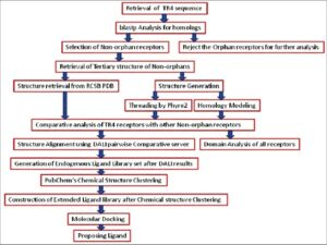 Overall methodology followed for the Deorphanization of Testicular Receptor 4