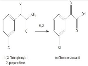 Reaction Scheme for the degradation of 1-(3-Chlorophenyl)-1, 2-propanedione to m- chlorobenzoic acid