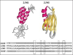 Sequence, dictionary of secondary structure of proteins assigned secondary structures