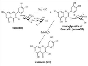 Hydrolysis of rutin (the size of the figure at the discretion of the editor)